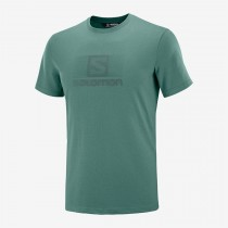 SALOMON - BLEND LOGO SS TEE M BALSAM GREEN - MEN