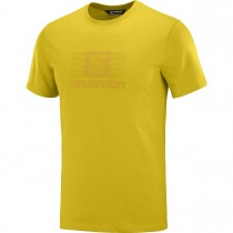 SALOMON - BLEND LOGO SS TEE M LEMON CURRY - MEN